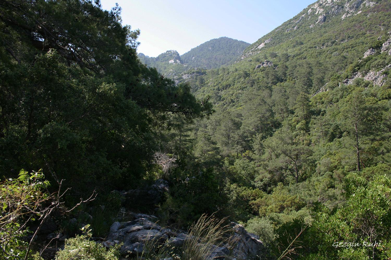 Olimpos - Adrasan arası vadi çıkışı